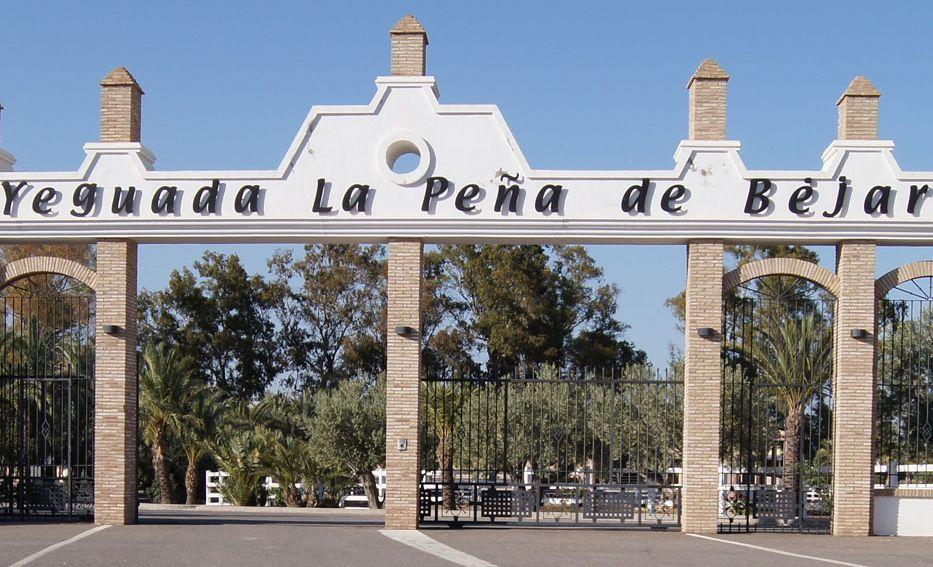 Remodelación y ampliación de Yeguada La Peña de Béjar